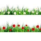 Ensemble sans couture d'herbe verte Image stock