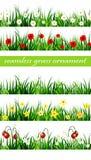 Ensemble sans couture d'herbe verte Photo stock