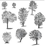 Ensemble tiré par la main d'arbres d'encre Placez des illustrations esquissées Croquis à l'encre noire et de brosse de sapin pour illustration stock