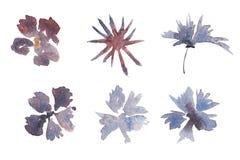 Ensemble tir? par la main d'aquarelle de fleurs illustration libre de droits