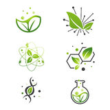 Ensemble vert de laboratoire de la Science abstraite de feuille de Vegan Image libre de droits