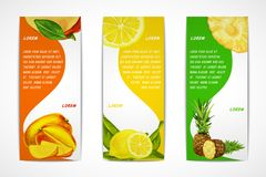 Ensemble vertical de bannière de fruits tropicaux Image libre de droits
