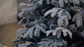 Ensembles de femme et préparation de l'arbre de Noël décorer la salle clips vidéos