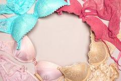 Ensembles de lingerie de dentelle de soutiens-gorge et de culottes colorés avec l'espace libre f Image libre de droits