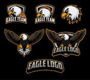 Ensembles de mascotte de logo de basket-ball avec le vecteur d'illustration d'aigle illustration libre de droits