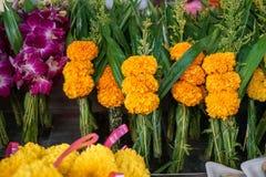 Ensembles de offre de fleur de temple thaïlandais frais de style faits de souci jaune, orchidée pourpre et feuilles de vert se ve Image libre de droits