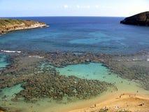 Ensenada coralina Fotografía de archivo libre de regalías