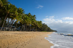 Ensenada de la palma frente al mar Imagen de archivo