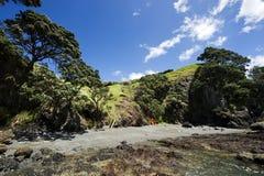 Ensenada de Nueva Zelandia Imágenes de archivo libres de regalías
