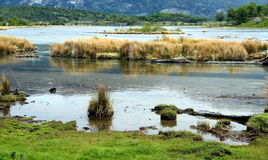 Ensenada Zaratiegui fjärd, Tierra del Fuego, Argentina Royaltyfri Bild