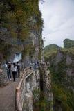 Enshi Grand Canyon plank Stock Photo