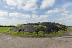 Ensilage on a dairy farm Royalty Free Stock Photos