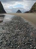 Enslig strand Arkivbilder