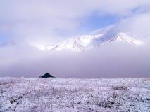 Ensligt tält i vinter på Wrangell St Elias National Park, alun Royaltyfri Fotografi