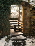 Entance aan het bos Royalty-vrije Stock Foto's