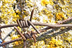 Entangled barbed wire fence Royalty Free Stock Photography