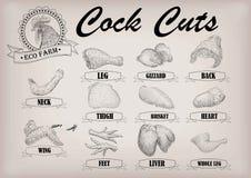 Entassez la poitrine de carcasse de pièces de plan de viande de coupe de coq de jeune coq illustration de vecteur