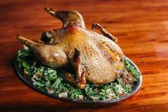 Ente auf einem Behälter mit Grüns Lizenzfreie Stockfotos