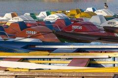 Ente, die auf einem Ruderboot steht Lizenzfreie Stockfotografie