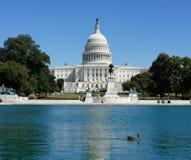 Ente und der Capitol Hill lizenzfreie stockfotos