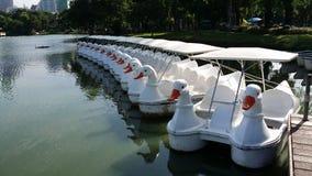 Ente watercycle und Wherryhafen Lizenzfreie Stockfotos