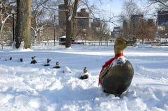 Enten im Schnee lizenzfreie stockfotos