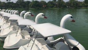 Entenboot pedalo oder Seepark Suanluang Rama 9 Bangkok Thailand, Landscapesee und weiße Paddel-Boote des Paddelgansbootes öffentl stock video