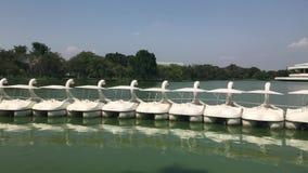 Entenboot pedalo oder Seepark Suanluang Rama 9 Bangkok Thailand, Landscapesee und weiße Paddel-Boote des Paddelgansbootes öffentl stock video footage