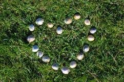 Entendez parler des coquilles s'étendant dans l'herbe Photographie stock libre de droits