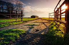 Enter the Farm. Open gates of the farmland with lit by the evening sun Royalty Free Stock Images