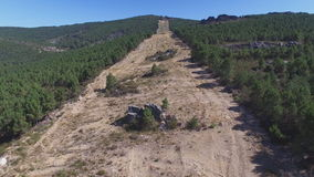 Entering firebreak, aerial view with pine tree forest and rock. Aerial view of firebreak between pine tree forest in the mountain, 4K stock video footage