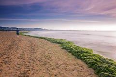 Free Enteromorpha Erosion Coast Stock Photo - 42087060
