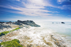Enteromorpha erosion coast Stock Image
