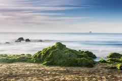 Enteromorpha erozi wybrzeże Zdjęcie Stock