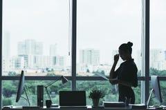 Enterpreneur femelle Photographie stock