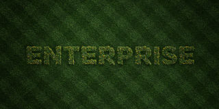 ENTERPRISE - fresh Grass letters with flowers and dandelions - 3D rendered royalty free stock image. Can be used for online banner ads and direct mailers Stock Images