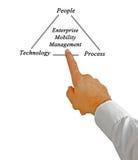 Enterprise Mobility Management. Presenting Diagram of Enterprise Mobility Management Royalty Free Stock Photos