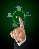 Enterprise Resource Management. Presenting Diagram of Enterprise Resource Management Stock Photo