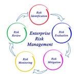 Enterprise Risk Management. Diagram of Enterprise Risk Management Royalty Free Stock Image