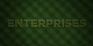 ENTERPRISES - fresh Grass letters with flowers and dandelions - 3D rendered royalty free stock image Stock Images