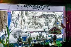 Enterré dans la neige images libres de droits