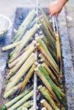 Enterre o Lam de Tailândia Foto de Stock