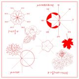 Entertaining Mathematics. Trigonometric functions and algebraic graphs of water lily sheet, maple and nasturtium leaves. royalty free illustration