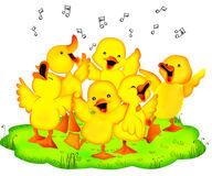 Entertainment ducklings Royalty Free Stock Photo