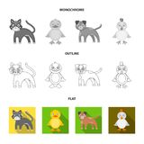 Entertainment, farm, pets and other web icon in flat,outline,monochrome style. Eggs, toy, recreation icons in set stock illustration