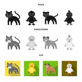 Entertainment, farm, pets and other web icon in black, flat, monochrome style. Eggs, toy, recreation icons in set stock illustration