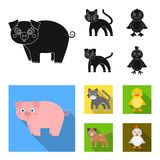 Entertainment, farm, pets and other web icon in black, flat style. Eggs, toy, recreation icons in set collection. vector illustration