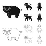 Entertainment, farm, pets and other web icon in black,outline style. Eggs, toy, recreation icons in set collection. Entertainment, farm, pets and other icon in stock illustration
