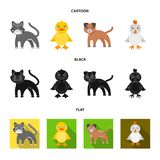 Entertainment, farm, pets and other web icon in cartoon,black,flat style. Eggs, toy, recreation icons in set collection. vector illustration