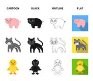 Entertainment, farm, pets and other web icon in cartoon,black,outline,flat style. Eggs, toy, recreation icons in set. Entertainment, farm, pets and other icon in royalty free illustration